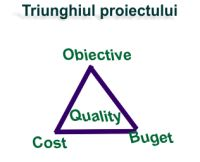 triunghi project management